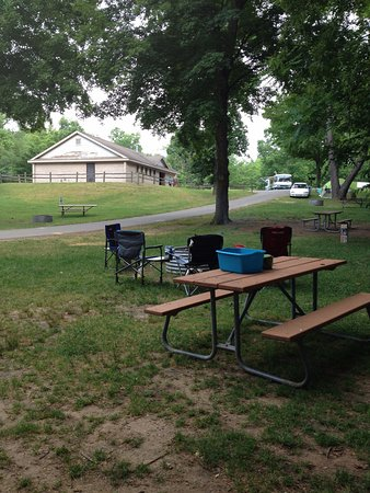 Chelsea, MI: Campsite view to restroom/showers. Lots of mature trees if you are tenting or do not have AC.