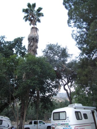 Sequoia RV Ranch Photo