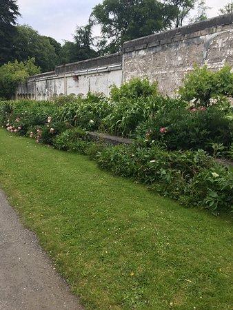 Birr, Irland: photo0.jpg