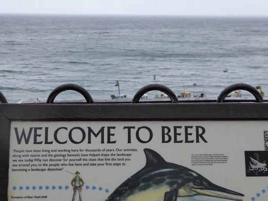 Beer/Devon