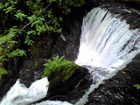 Machynlleth, UK: The Nearby Waterfall