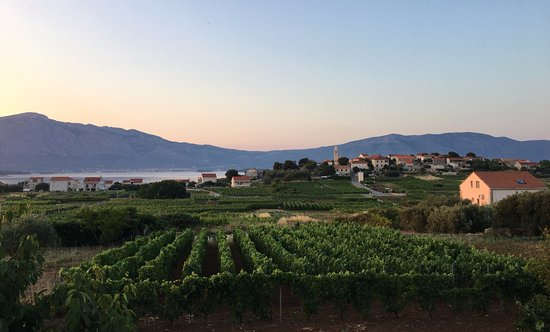 Korcula Island, Kroatien: Golden hour view from the vineyard
