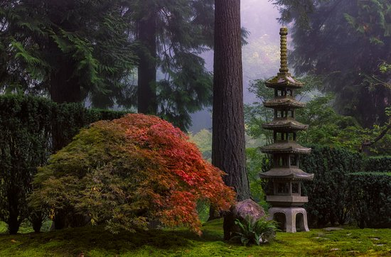 Portland japanese garden all you need to know before you go with photos tripadvisor for Portland japanese garden admission