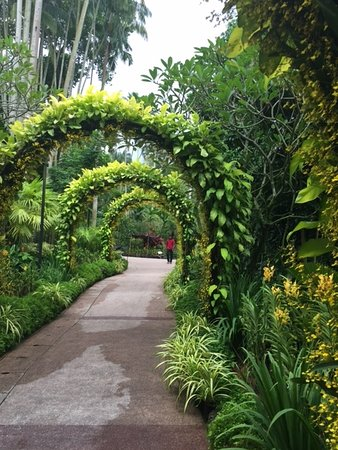 Bentong, Malaysia: The entire garden was extremely green and bloomed