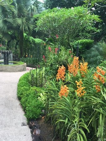Bentong, Malaysia: Even the pathways were beautiful!