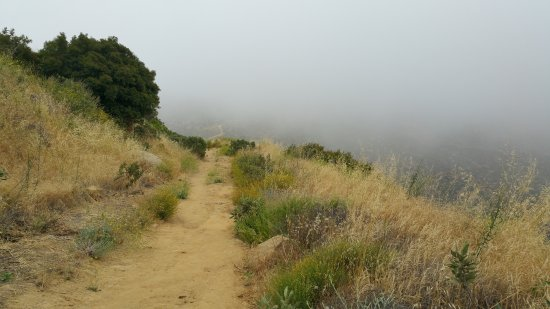 Simi Valley, CA: The Trail Covered by Morning Fog