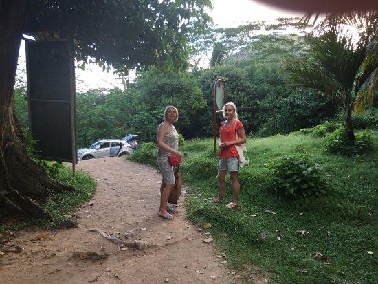 Victoria, Seychelles: В парке.