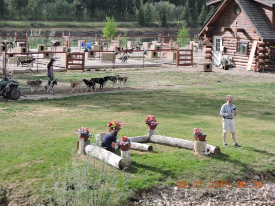 Picture Of Riverboat Discovery Fairbanks Tripadvisor