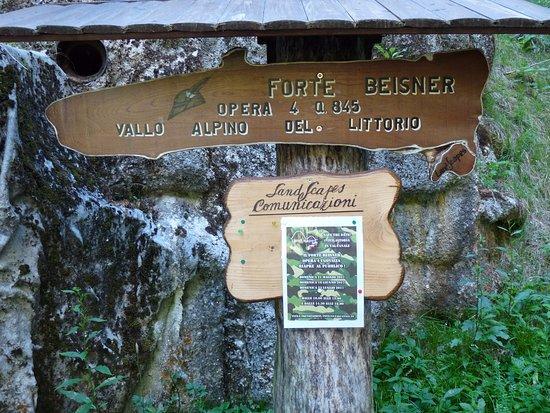Forte Beisner Opera 4