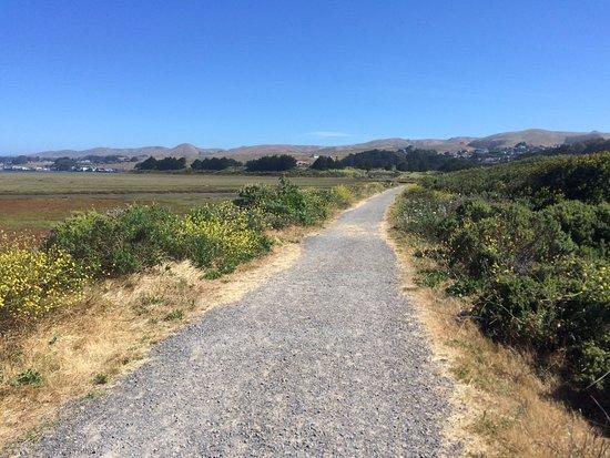 Bird Walk Coastal Access Trail