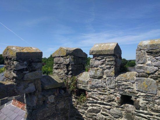 Ντάνταλκ, Ιρλανδία: IMG_20170620_140955_large.jpg