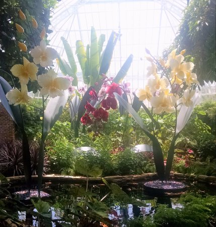 Phipps Conservatory: One of the rooms at Phipps
