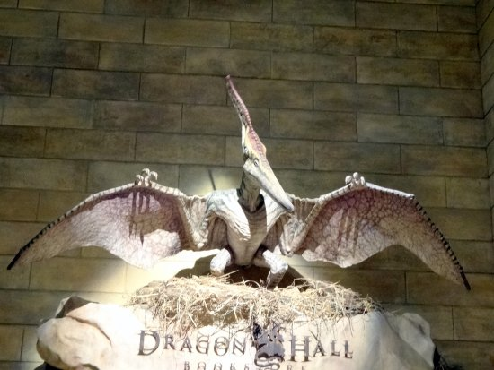 Dragon Hall Picture Of Creation Museum Petersburg