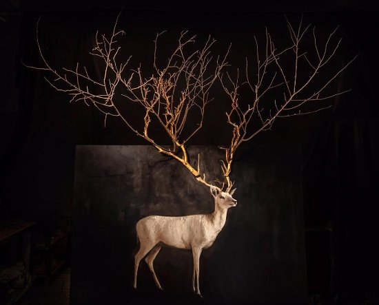Peekskill, NY: Todd Murphy - artist. A white fallow deer painting with branches for antlers