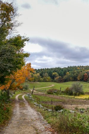 West Brookfield, แมสซาชูเซตส์: New England countryside/backyard!!