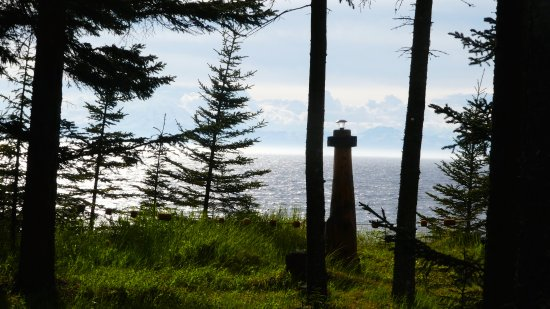 Kasilof, AK: Another view of acreage that is part of Ocean Bluff B&B.