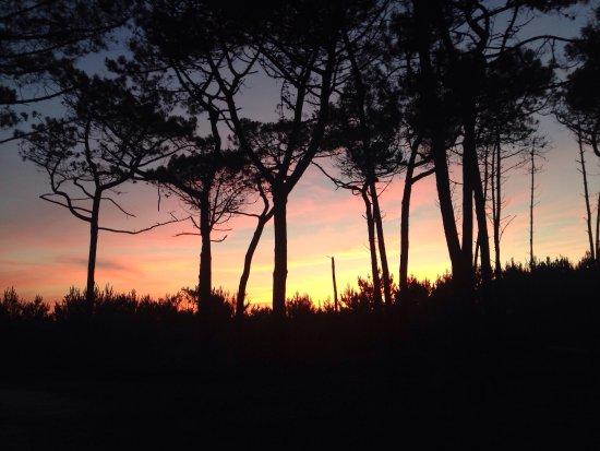 Gironde, Francia: photo4.jpg
