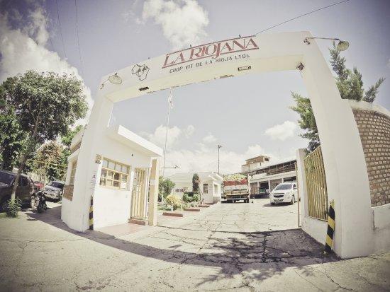Chilecito, Argentina: Bodega La Riojana Cooperativa Ltda