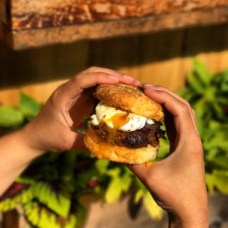 Sechelt, Canada: Biscuit Sandwich
