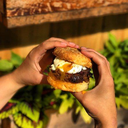 Sechelt, แคนาดา: Biscuit Sandwich