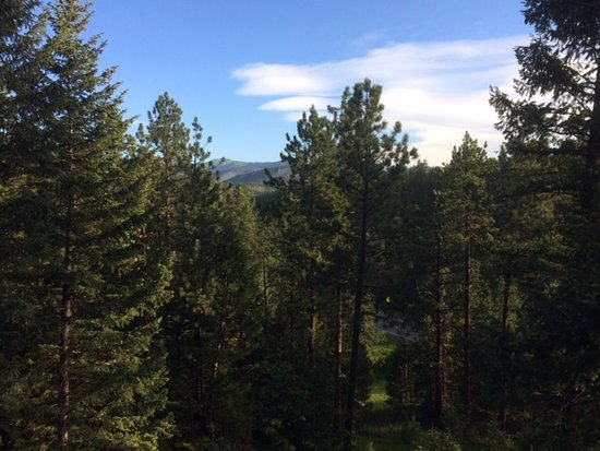 Evergreen, CO: View from the deck.