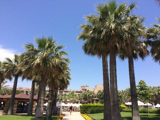 Crystal Tat Beach Golf Resort & Spa Foto