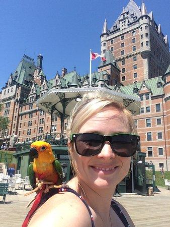 Mon perroquet et moi en promenade sur la terrasse dufferin