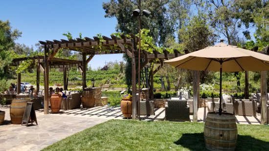 Temecula, CA: Ground of winery.