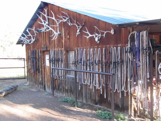 Winston, Nuevo Mexico: Tack Room at the Ranch