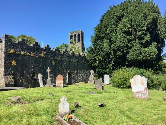 Malahide, Irlandia: Les ruines de l'abbaye et le cimetière