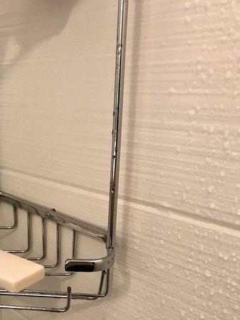 รอมิวลัส, มิชิแกน: Broken shower shelf/basket