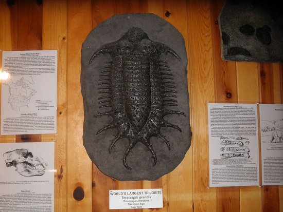 Lost World Caverns: Casts of multiple prehistoric creatures in the building