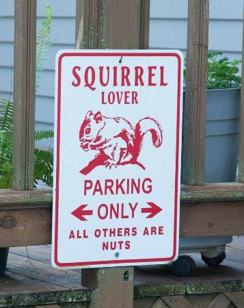 Squirrel's Nest Bed & Breakfast, LLC: Self explanatory! :-)
