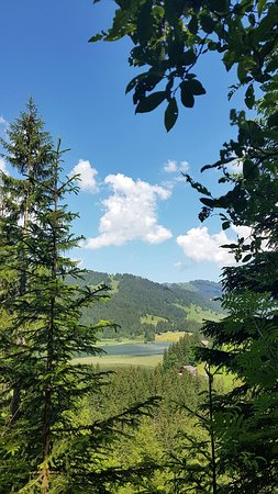 Lauenen, Switzerland: 20170620_111436_large.jpg