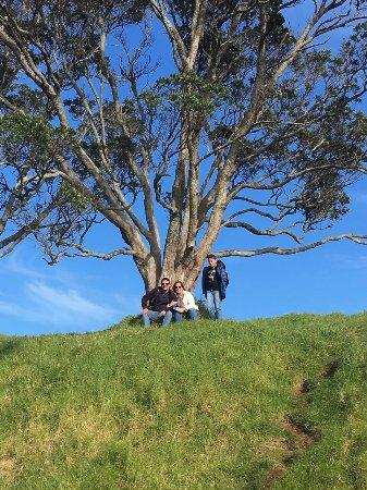 Mount Eden: photo6.jpg
