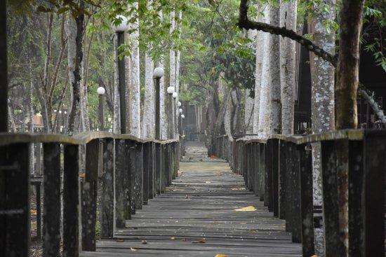 Kota Kinabatangan, Malaysia: De weg naar het restaurant