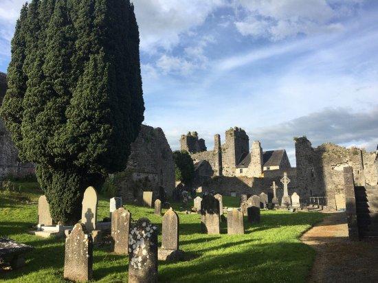 Fethard, ไอร์แลนด์: Holy Trinity Medieval Graveyard has many items of interest