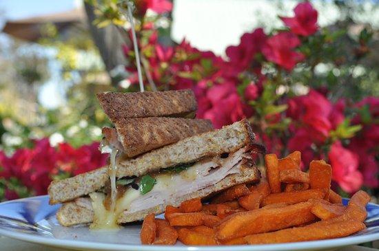Darrow, LA: Turkey and Brie Sandwich
