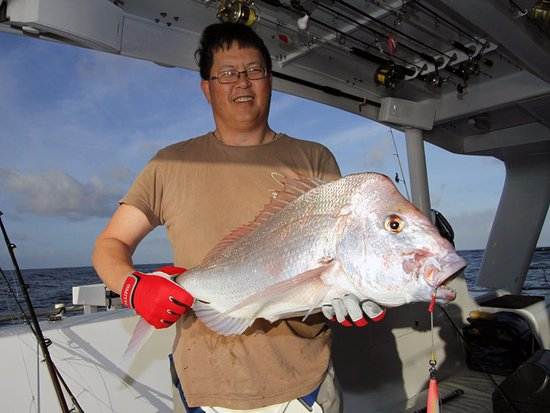 Hervey Bay, Australia: Snapper
