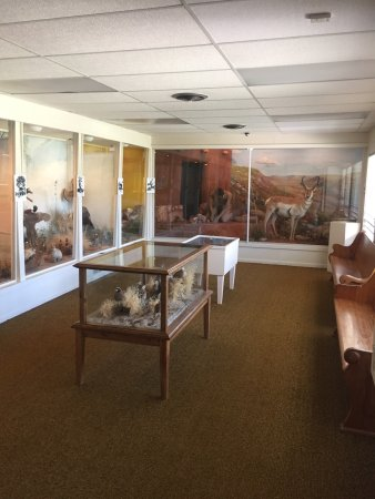 Panhandle, TX: This museum is a wonderful small town treasure! A short 30 minute drive from Amarillo, there is