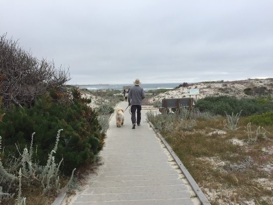 Andril Fireplace Cottages: Boardwalk from Asilomar Event Center to Beach