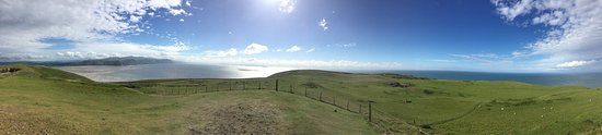 Great Orme: photo5.jpg
