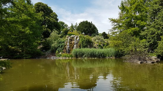 Palmengarten und Botanischer Garten: Numerous buidlings in the park filled with plants from specific area. Loved the trails around th
