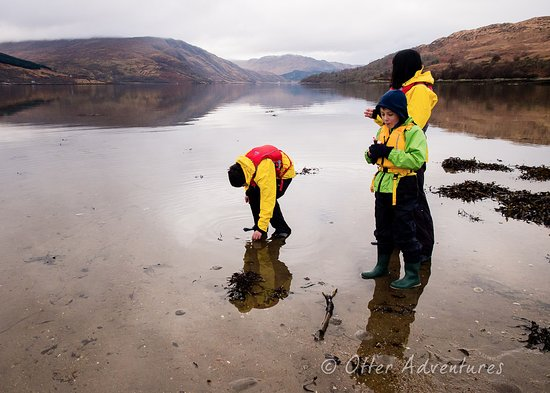 Strontian, UK: Exploring for natural treasures on a beach reaps many rewards
