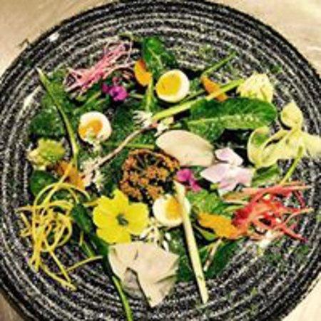 Brading, UK: Foraged Salad