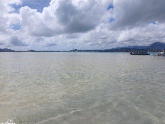 Kaneohe, Hawái: sandbar