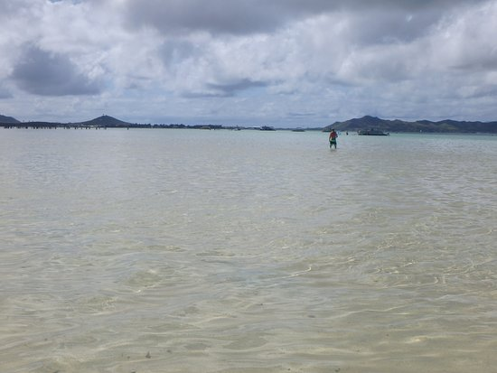 Kaneohe, Havaí: standing in the middle of the bay on sand