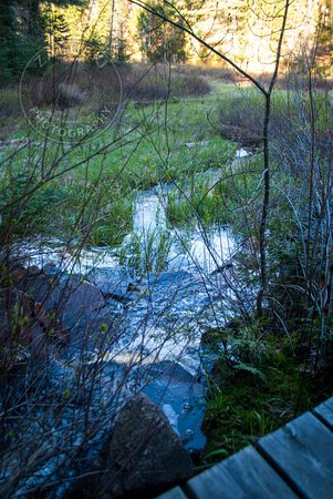 Algonquin Provincial Park, Canada: scenery