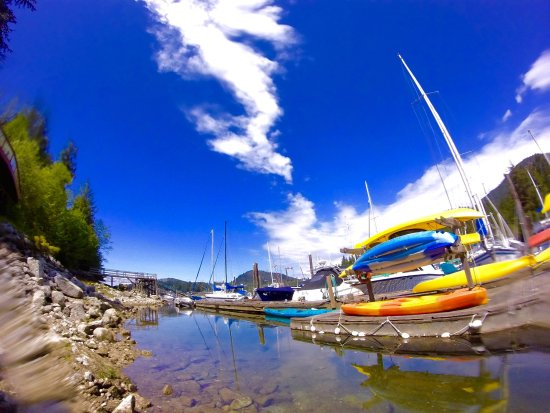 Madeira Park, Canada: Yes we have Kayaks for rent in our marina