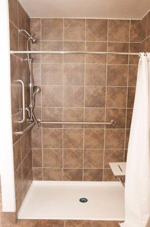 Elko, NV: Roll in Shower
